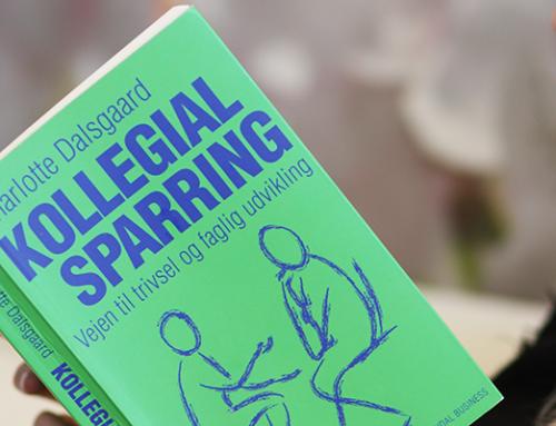 Bog: Kollegial Sparring